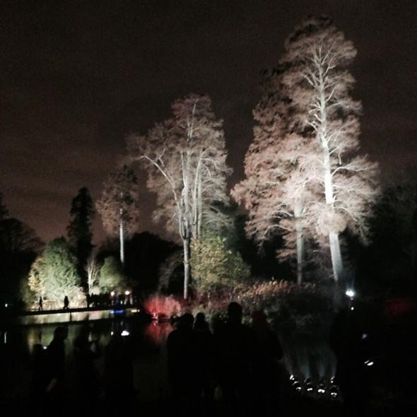 Christmas @ Kew Gardens