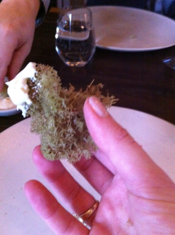 Fried Moss w/ Creme Fraiche - Noma: A Broad Cooking